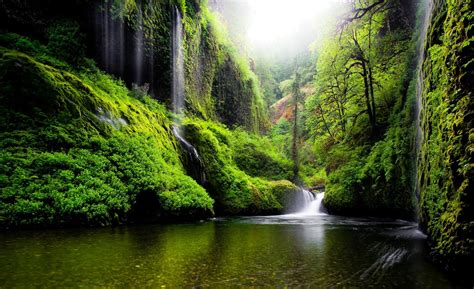 Amazing Nature Wallpapers, Widescreen Images, Amazing ...