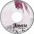 Andrew's Album Art: Amerie - In Love & War (2009)