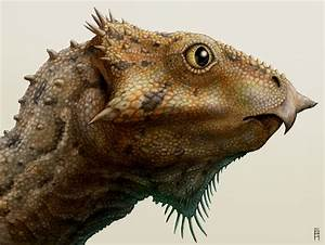 Aquilops, the little dinosaur that could | The Integrative ...