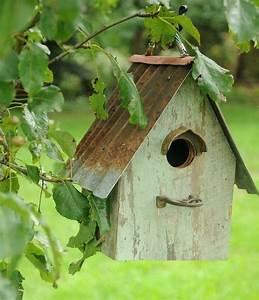 les 25 meilleures idees de la categorie mangeoires de With idee deco de jardin exterieur 9 mangeoire oiseaux dans le jardin 25 idees faciles 224 bricoler