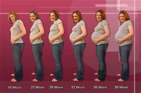 Masalah Pada Kehamilan 4 Bulan Perubahan Tubuh Ibu Hamil Pada Trimester Ke 2 13 28