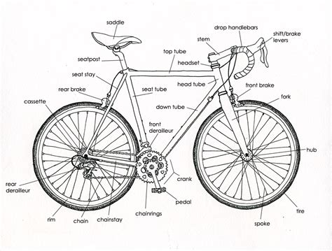 Your Dubious Guide To The World Of Bikes