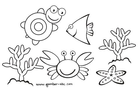 binatang laut lucu