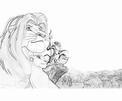 Coloring Lion King Disney Popular