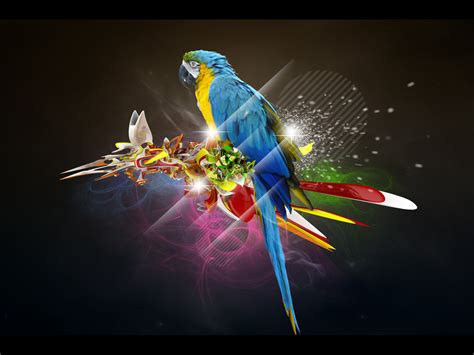 The Parrot By Featheredpixels On Deviantart