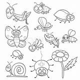 Coloring Insect Insects Insectos Colorear Libro Coloriage Insectes Vektor Colourbox Animados Malbuch Insekten Colouring Dk Tegning Pdf Ladybug Archivioclerici Adorable sketch template