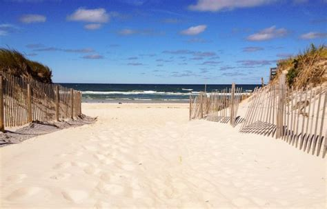 Top 5 Reasons To Visit Cape Cod This Summer  Boston Magazine