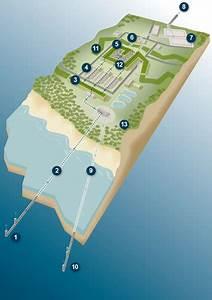 The Desalination Plant