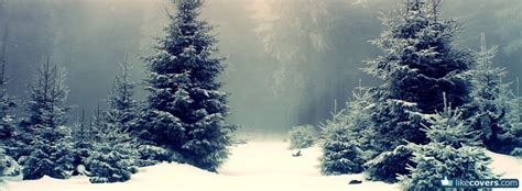 Winter Cover by Christmas Trees In The Winter Facebook Covers