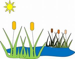 Pond C | Free Images at Clker.com - vector clip art online ...