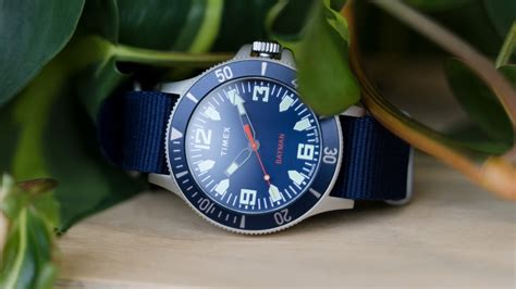 timex dive timex x greats bayman dive two snobs