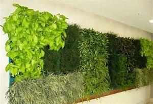 35 melhores imagens de vertical farming minigarden no With katzennetz balkon mit plug and plant vertical garden