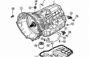 Trans External Parts Breakdown
