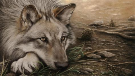wolf drawing hd wallpaper wallpaper studio  tens