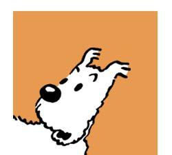 Les Aventures De Tintin Milou