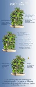 Pflanzen Für Schattige Plätze : stauden f r schattige pl tze wohn design ~ Orissabook.com Haus und Dekorationen
