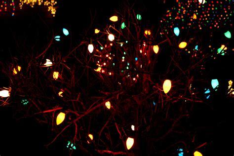 christmas tree light hd wallpaper stylish hd wallpapers stylishhdwallpapers