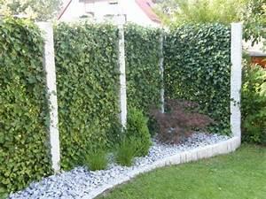 sichtschutz terrasse pflanzen sichtschutz fr balkon und With französischer balkon mit stein sichtschutz garten