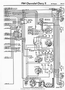 Electrical Wiring Colors Thailand Top Wire Diagram Honda