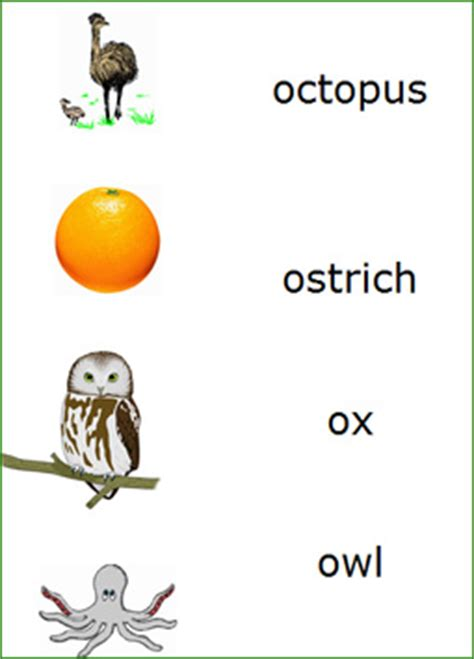 things that start with o preschool preschool letter o words match the words starting with 802