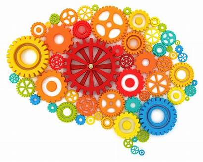 Thinking Creative Brain Transparent Colourful
