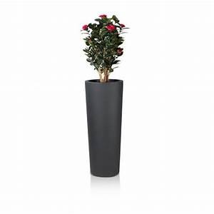 Pot Fleur Plastique : pots de fleurs et conteneurs comparez les prix pour ~ Premium-room.com Idées de Décoration