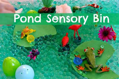 On The Pond Themed Crafts And Sensory