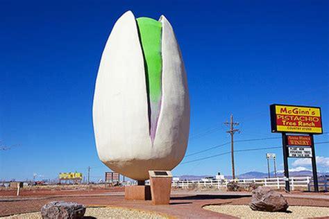 world s largest pistachio
