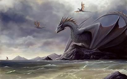 Dragon Fantasy Digital Deviantart Artwork Artist Wyverns