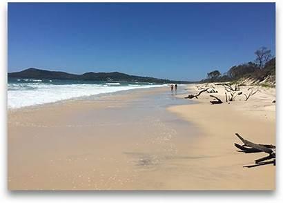 Beach Shore Beaches North Noosa Brisbane Enjoy