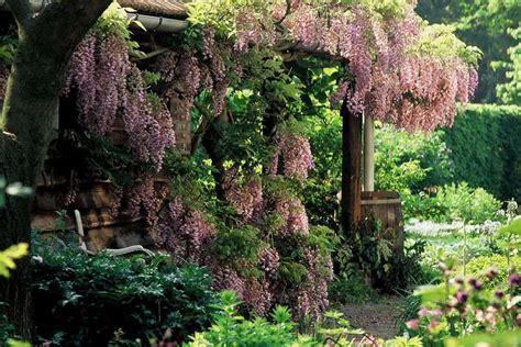 Schattenplätze Im Garten Gestalten Gartentechnikde