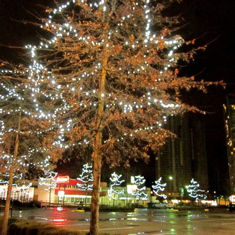 the sequentially tree lights