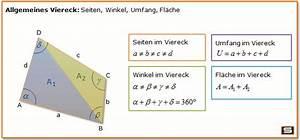 Flächeninhalt Quadrat Seitenlänge Berechnen : viereck berechnen formel eigenschaften haus der vierecke ~ Themetempest.com Abrechnung