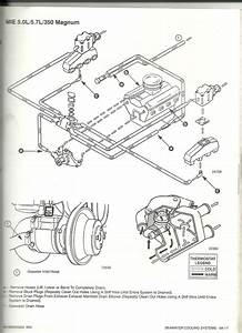 34 Mercruiser Raw Water Pump Diagram