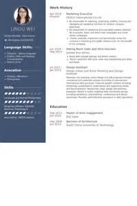 Advertising Executive Resumeadvertising Executive Resume by Marketing Executive Resume Sles Visualcv Resume Sles Database