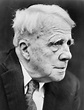 The Case for The Poetry Of Robert Frost | WordRustler