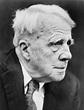 The Case for The Poetry Of Robert Frost | WordRustler