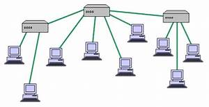 Network Types  Topology In Network Design  Osi Model