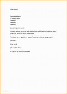 New Simple Resignation Letter Sample Download S