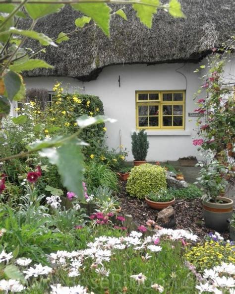 1000+ Images About Thatched Bliss On Pinterest
