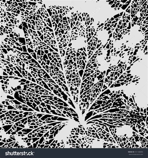 leaf veins clipart   cliparts  images