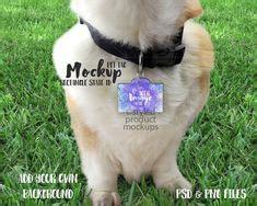 pet products mockups images   mockup pet