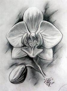 Orchid in Graphite by Sirius-Tattoo on DeviantArt