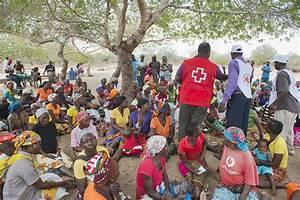 Disaster Relief Emergency Fund (DREF) - International ...