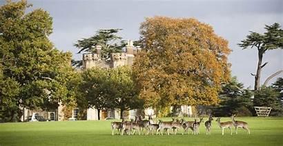 Knepp Estate England