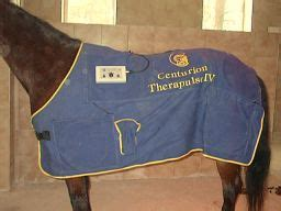magnetfeldtherapie pferdephysiotherapie der pferde