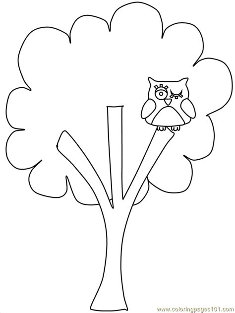tree template print out c printable tree coloring home