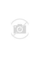 Image result for Navy Submarine League
