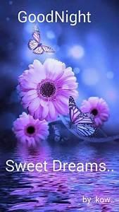 Good night guys,good night sweetie,sweet dreams.luv u # ...