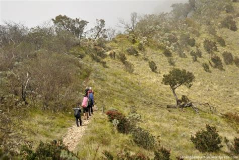 jalur pendakian  bisa kamu pilih  mencapai